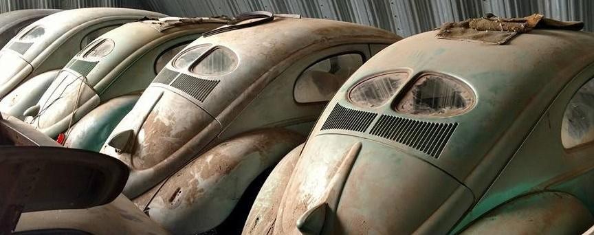 buy a volkswagen beetle